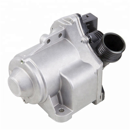 11517586925 E60 E90 E65 E66 X1 X3 X5 Z4 Automotive Electric Water Pump for BMW