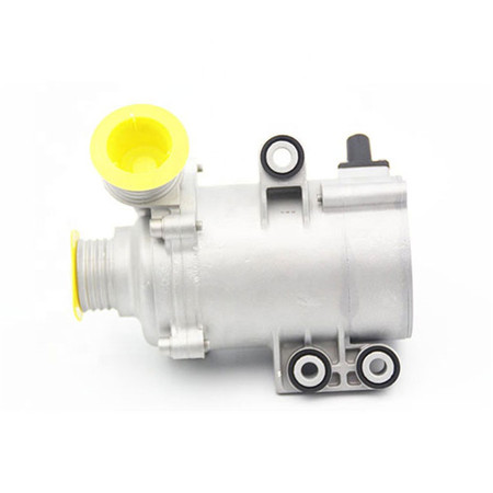 Automotive electric water pumps electric motor small water pumps fountain